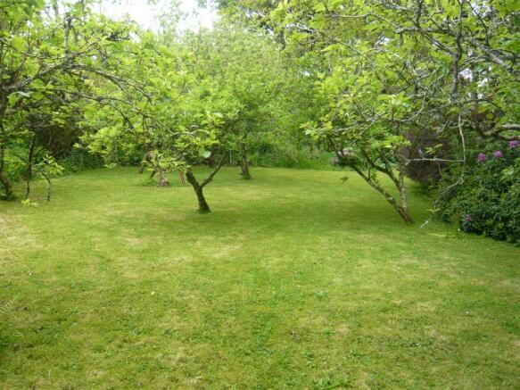 Garden main.JPG