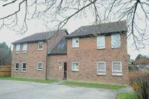Studio apartment to rent in Darnay Rise...