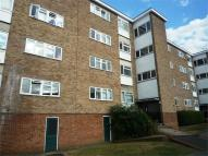 Flat to rent in 4 Haig Court, CHELMSFORD...