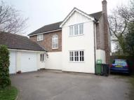 Detached property in Nounsley Road, Nounsley...