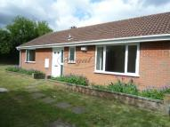 Bungalow to rent in Broadview Avenue, Rainham