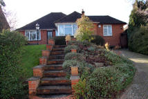 3 bed Detached Bungalow in Winchester Street...
