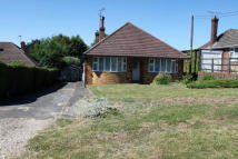 3 bed Detached Bungalow in Old Worting Road...