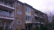 Apartment to rent in st michaels court