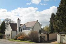 Cottage in Broad Lane...