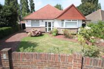 3 bed Detached Bungalow in Shirley