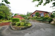 Detached Bungalow in Old Mold Road, Gwersyllt...