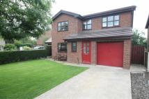 Detached house for sale in Orchard Court, Gresford...