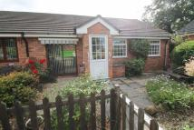 Semi-Detached Bungalow for sale in Trewethyn Park, Gresford...