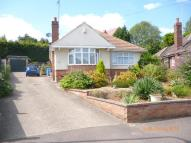 Detached Bungalow to rent in Greenfield Avenue...