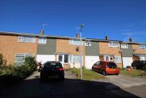 Cherrytree Rise Terraced property to rent