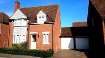 Detached property to rent in Cypress Court, Dunmow...