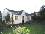 Manor Road Semi-Detached Bungalow to rent