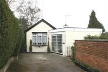 Detached Bungalow for sale in Freda Avenue, Gedling...