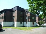 Studio apartment to rent in IFIELD