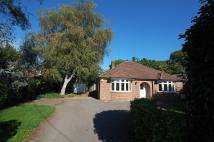 3 bedroom Detached Bungalow in Chandlers Ford