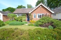 3 bed Detached Bungalow in Chandlers Ford