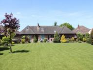 Detached Bungalow for sale in Ashurst, Hampshire