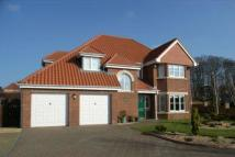 'Hazelhurst' Detached house for sale