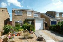 Detached home for sale in Cattistock Close...