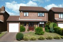 4 bed Detached house in Great Auk, Galley Hill...