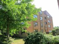 Flat for sale in St Winifreds Road...