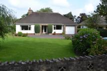 Bungalow for sale in Middlewich Road, Sandbach