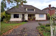 2 bed Bungalow in Middlewich Road, Sandbach