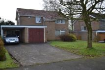 4 bed Detached home to rent in Congleton Road, Sandbach