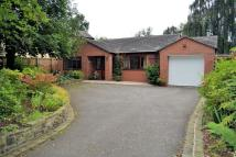 Bungalow for sale in Cross Road, Haslington