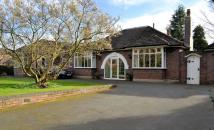 Bungalow to rent in Mill Hill Lane, Sandbach
