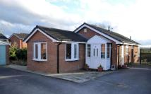 2 bed Bungalow for sale in Mortimer Drive, Sandbach