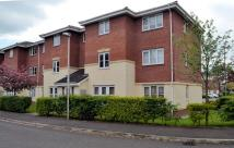 Apartment to rent in William Foden Close...