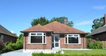 3 bed Detached Bungalow for sale in Hungerford Place...