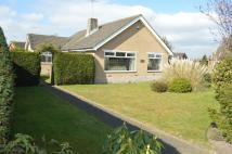 Detached Bungalow in Church Lane, Sandbach