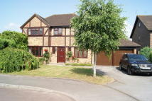 4 bed Detached house for sale in Quince Tree Way, Hook