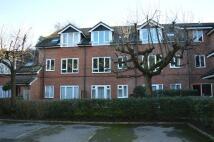 Studio flat in Seymour Court...