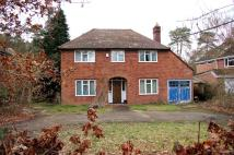 5 bed Detached house for sale in Nine Mile Ride...