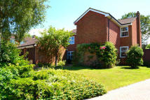 5 bedroom Detached property for sale in Brean Walk, Earley...