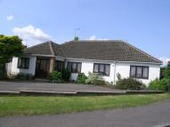 5 bed Detached Bungalow for sale in Liphook Road, Lindford...