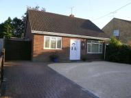 4 bedroom Detached Bungalow for sale in Windsor Road, Lindford...