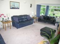 Detached Bungalow for sale in Eveley Close, Whitehill...