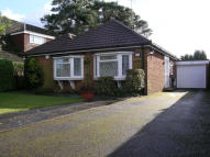 Detached Bungalow for sale in New Road, Whitehill...