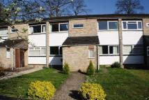 2 bed Ground Maisonette for sale in Larch Drive, Woodley