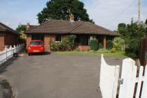 Detached Bungalow for sale in Erleigh Court Gardens...
