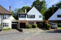 Detached house for sale in Silver Birch Avenue...