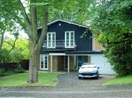 4 bed Detached house in Kendal Avenue, Epping...