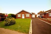 3 bedroom Detached Bungalow in Ledra Drive, Pagham...