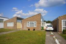 Detached Bungalow to rent in Mallard Crescent, Pagham...