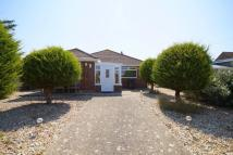 Detached Bungalow in 91 West Front Road...